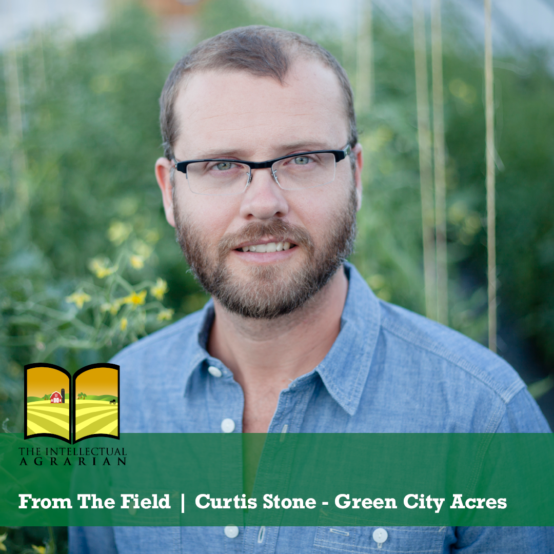 From The Field   Curtis Stone – Green City Acres