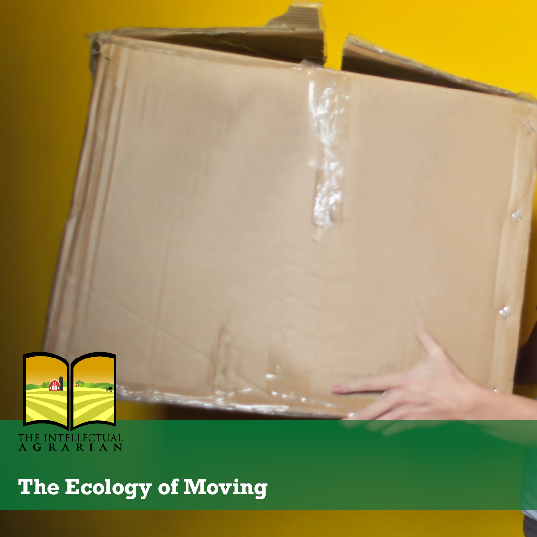The Ecology of Moving