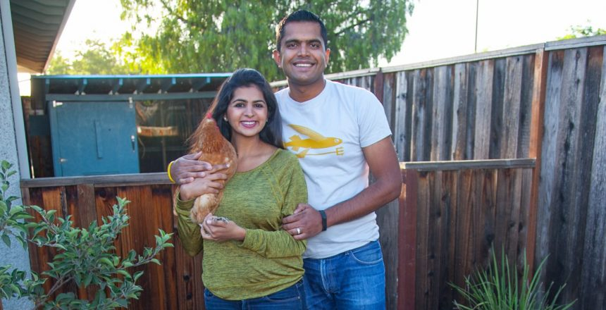Kunal and the Chickens (283 of 420)